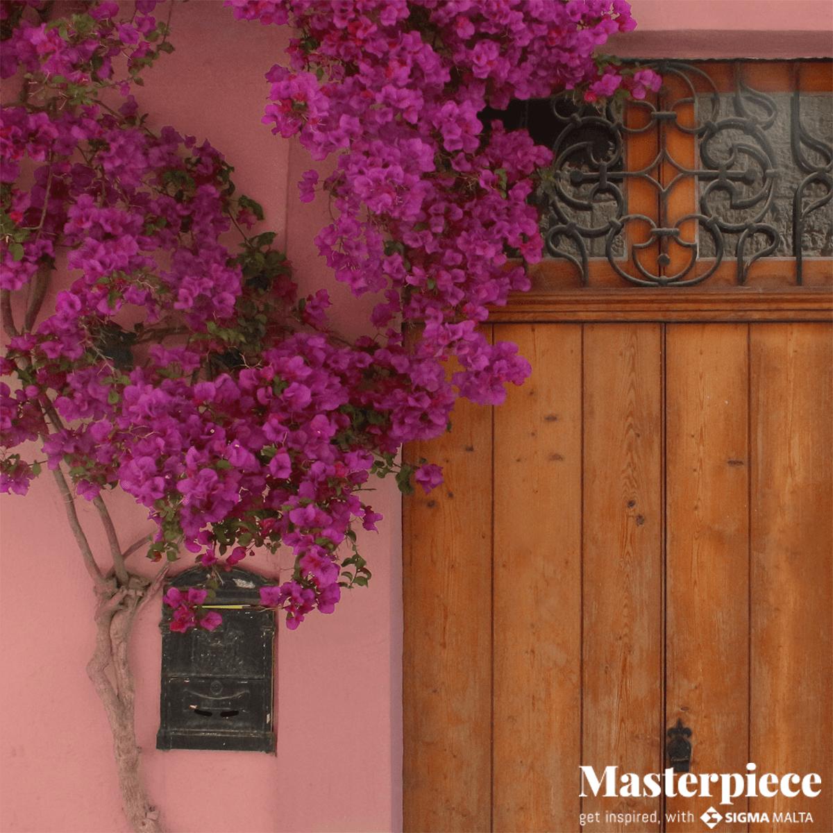Fuchsia</br><span>Door Planters